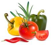 ρεαλιστικά λαχανικά φωτ&omi Στοκ εικόνα με δικαίωμα ελεύθερης χρήσης
