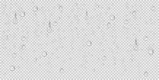 Ρεαλιστικές πτώσεις νερού, φυσαλίδες ατμού ή απεικόνιση συμπύκνωσης Σταγόνες βροχής στο διαφανές υπόβαθρο διανυσματική απεικόνιση