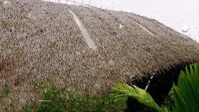 Ρεαλιστικές σταγόνες βροχής με τη στέγη αχύρου φιλμ μικρού μήκους