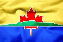 Ρεαλιστική απεικόνιση σημαιών κόλπων βροντής διανυσματική απεικόνιση