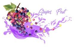 Ρεαλιστική απεικόνιση χυμών φρούτων σταφυλιών Στοκ Φωτογραφία