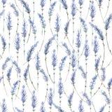 Ρεαλιστική απεικόνιση Watercolor floral πρότυπο άνευ ραφής prov Στοκ Εικόνες