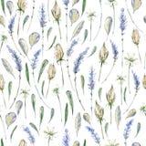 Ρεαλιστική απεικόνιση Watercolor floral πρότυπο άνευ ραφής prov Στοκ εικόνα με δικαίωμα ελεύθερης χρήσης