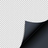 Ρεαλιστική διαφανής κατσαρωμένη γωνία με τη σκιά διάνυσμα ελεύθερη απεικόνιση δικαιώματος
