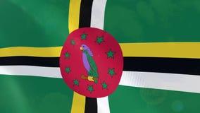 Ρεαλιστική ζωτικότητα σημαιών της Δομίνικας διανυσματική απεικόνιση