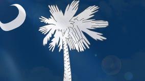 Ρεαλιστική ζωτικότητα σημαιών της νότιας Καρολίνας διανυσματική απεικόνιση