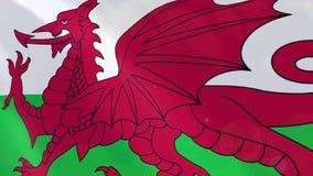 Ρεαλιστική ζωτικότητα σημαιών της Ουαλίας διανυσματική απεικόνιση