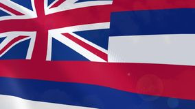 Ρεαλιστική ζωτικότητα σημαιών της Χαβάης διανυσματική απεικόνιση