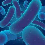 Ρεαλιστικό διάνυσμα αποικιών βακτηριδίων γαλακτοβακίλλων ελεύθερη απεικόνιση δικαιώματος