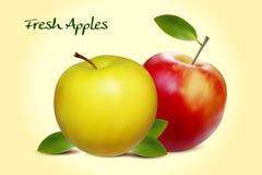 Ρεαλιστικά διανυσματικά μήλα διανυσματική απεικόνιση
