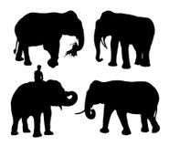 Ρεαλιστικές σκιαγραφίες του ασιατικού συνόλου ελεφάντων Στοκ Εικόνα