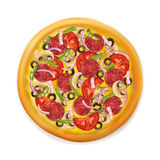 Ρεαλιστική πίτσα Στοκ Εικόνα