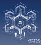 Ρεαλιστικό διανυσματικό snowflake Στοκ εικόνες με δικαίωμα ελεύθερης χρήσης