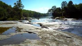 Ρεύματα και shimmers ποταμών κάτω από τις ακτίνες ήλιων ενάντια στη ζούγκλα απόθεμα βίντεο