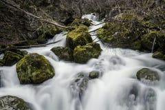 Ρεύμα άνοιξη στο βουνό Στοκ Εικόνες