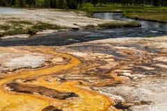 Ρεύμα βουνών, εθνικό πάρκο Yellowstone Στοκ Εικόνες
