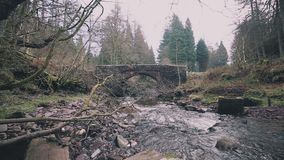 Ρεύμα βουνών με μια παλαιά πέτρινος-χτισμένη γέφυρα στη νότια Ουαλία, UK απόθεμα βίντεο