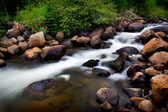 Ρεύμα βουνών με πράσινο Foilage στοκ εικόνες με δικαίωμα ελεύθερης χρήσης