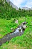 Ρεύμα βουνών σε ένα υψηλό αλπικό ίχνος στο εθνικό πάρκο παγετώνων Στοκ Εικόνα