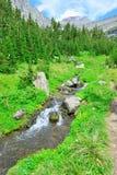 Ρεύμα βουνών σε ένα υψηλό αλπικό ίχνος στο εθνικό πάρκο παγετώνων Στοκ φωτογραφία με δικαίωμα ελεύθερης χρήσης