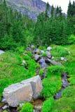 Ρεύμα βουνών σε ένα υψηλό αλπικό ίχνος στο εθνικό πάρκο παγετώνων Στοκ Φωτογραφίες