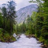Ρεύμα βουνών στα ξύλα Στοκ εικόνες με δικαίωμα ελεύθερης χρήσης