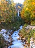 Ρεύμα βουνών στην κοιλάδα Lepena Στοκ Εικόνες