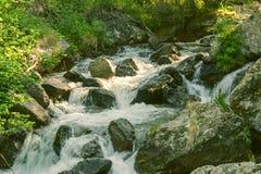 Ρεύμα βουνών στο δάσος Στοκ Εικόνες