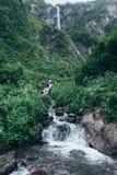 Ρεύμα βουνών στο δασικό, φυσικό τοπίο στοκ εικόνα