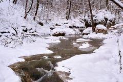 Ρεύμα βουνών το χειμώνα στοκ εικόνα