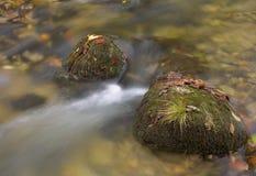 ρεύμα βράχων στοκ φωτογραφίες