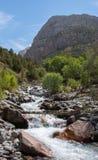 Ρεύμα ενός ποταμού βουνών στοκ εικόνες με δικαίωμα ελεύθερης χρήσης