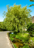 Ρεύμα κήπων Στοκ Φωτογραφίες