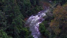 Ρεύμα ποταμών στη ζούγκλα Στοκ εικόνα με δικαίωμα ελεύθερης χρήσης