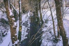 Ρεύμα που περιβάλλεται τα δέντρα και τους δρόμους που καλύπτονται από στο χιόνι κατά τη διάρκεια της θύελλας Emma Στοκ εικόνες με δικαίωμα ελεύθερης χρήσης