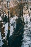 Ρεύμα που περιβάλλεται τα δέντρα και τους δρόμους που καλύπτονται από στο χιόνι κατά τη διάρκεια της θύελλας Emma Στοκ Φωτογραφίες