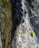 Ρεύμα που προέρχεται από τους βράχους ενός βουνού Στοκ Εικόνες
