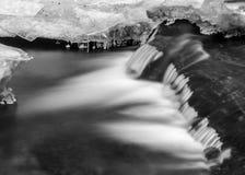 Ρεύμα που ρέει κάτω από το μεγάλο πεσμένο κορμό δέντρων Στοκ φωτογραφία με δικαίωμα ελεύθερης χρήσης