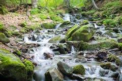 Ρεύμα σε ένα δάσος βουνών Στοκ εικόνες με δικαίωμα ελεύθερης χρήσης