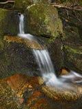 Ρεύμα στο δάσος Στοκ εικόνες με δικαίωμα ελεύθερης χρήσης