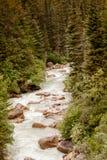 Ρεύμα της Αλάσκας Στοκ Εικόνες