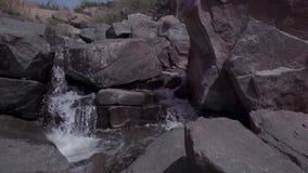 Ρεύμα του νερού στις άγρια περιοχές απόθεμα βίντεο