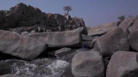 Ρεύμα του νερού στις άγρια περιοχές φιλμ μικρού μήκους