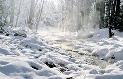 Ρεύμα χειμερινών βουνών Στοκ Φωτογραφία