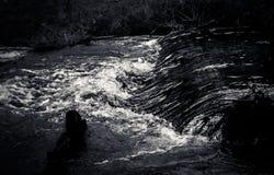 Ρεύμα Στοκ φωτογραφία με δικαίωμα ελεύθερης χρήσης