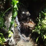 Ρεύμα Kauai Χαβάη Στοκ Φωτογραφία