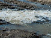 Ρηχά ορμητικά σημεία ποταμού πετρών ενός ποταμού βουνών Στοκ εικόνες με δικαίωμα ελεύθερης χρήσης