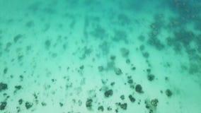 Ρηχή τροπική θάλασσα με τα κοράλλια εναέρια όψη φιλμ μικρού μήκους