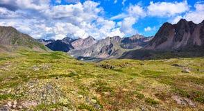Ρηχό αλπικό tundra Αρχέγονη φύση στοκ εικόνες