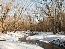 Ρηχό ρυάκι στο χειμερινό δάσος Στοκ Φωτογραφίες